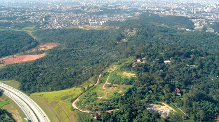 Pelo Parque Jequitibá