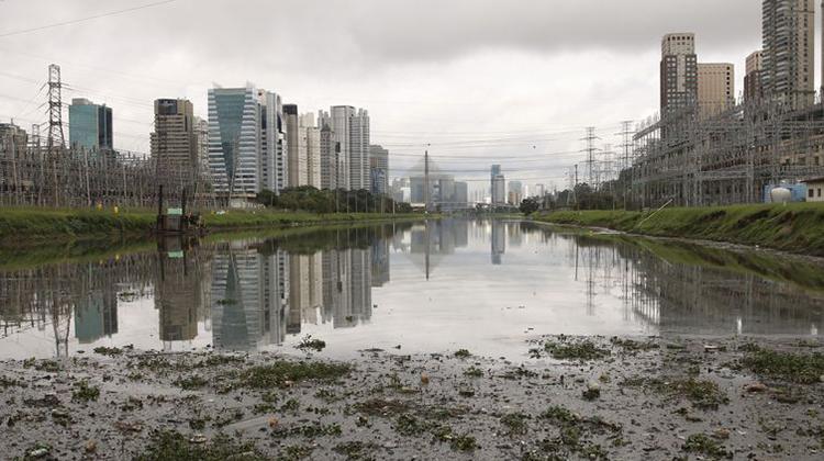 Peixe no Rio Pinheiros